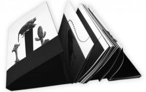 Maux et Merveilles Editions Chapka